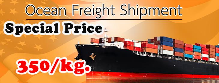 Ocean Freight Shipment